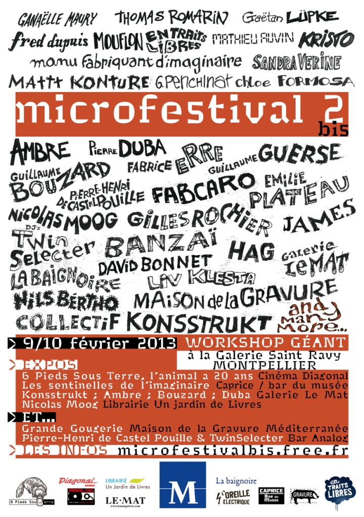 microfestival_fly_A6.indd